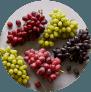 Sbrocco-Website-Nav-and-Footer-IMAGES-Nav-Grapes