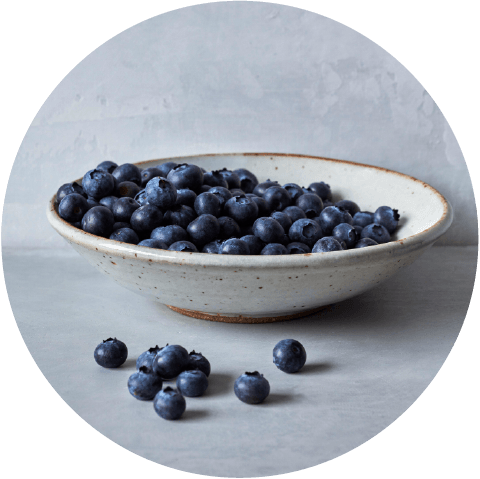 Sbrocco-Website-Berries-Blueberries