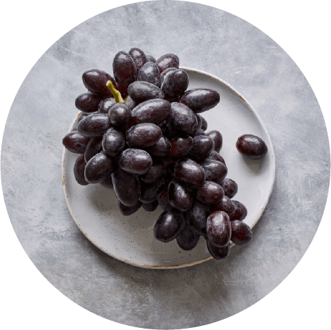 Sbrocco-Website-Grapes-Black-Seedless
